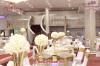 قاعة درة الأفراح و المناسبات